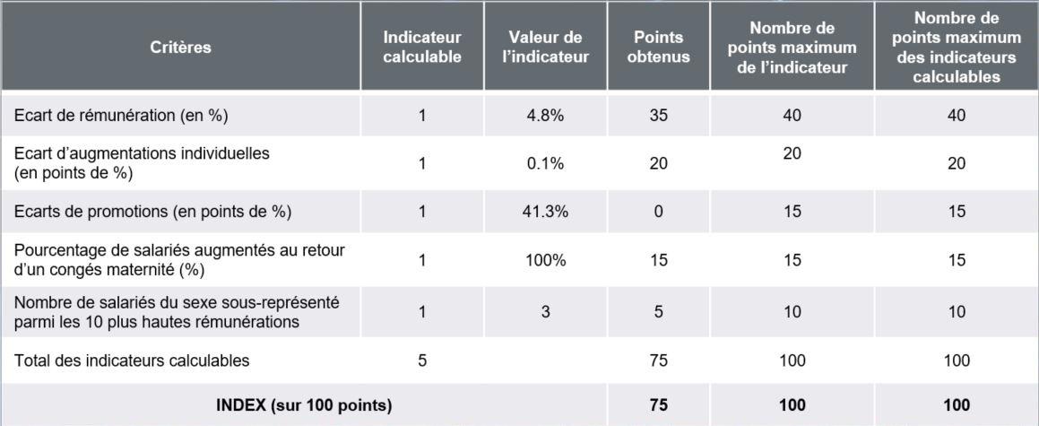 Index rémunération Homme-Femme SOURIAU SAS